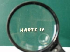 hartzlupe01__1-300x2251